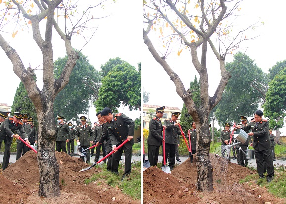 On this occasion, Deputy Minister Bui Van Nam visited working offices and tradition hall as well as planted souvenir trees at the headquarters of the Department.